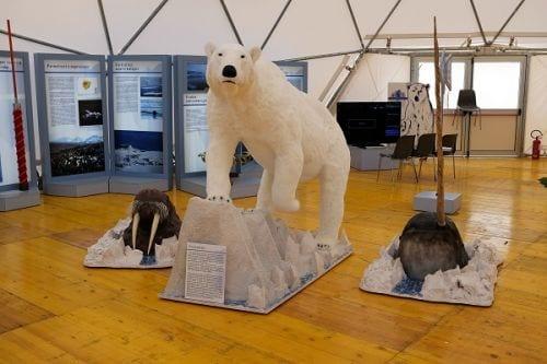 L'allestimento della mostra 'Artico' a Futuro Remoto