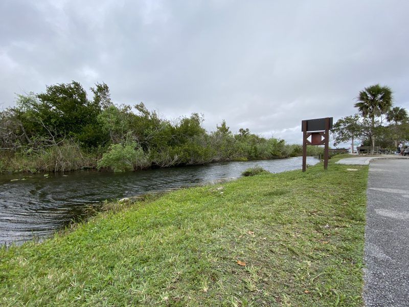 Shark Valley Visitor Center Everglades