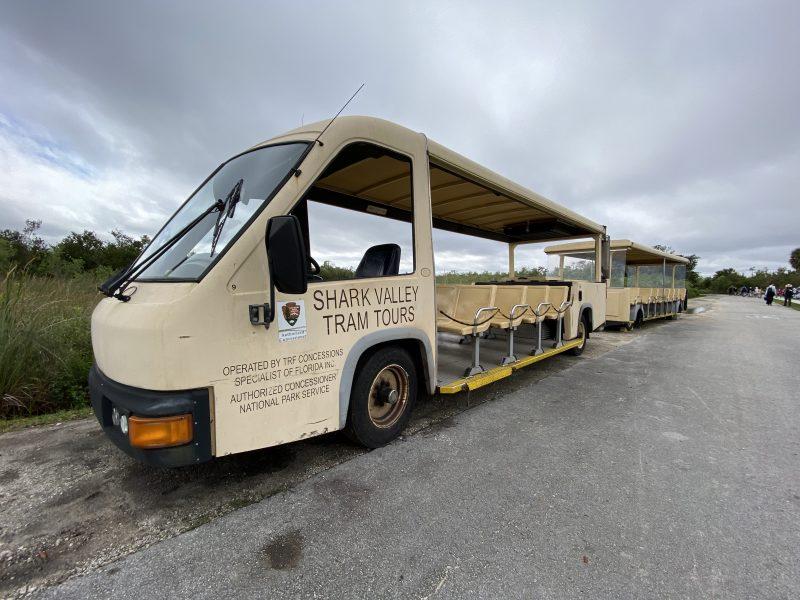 Shark Valley Tram Tours