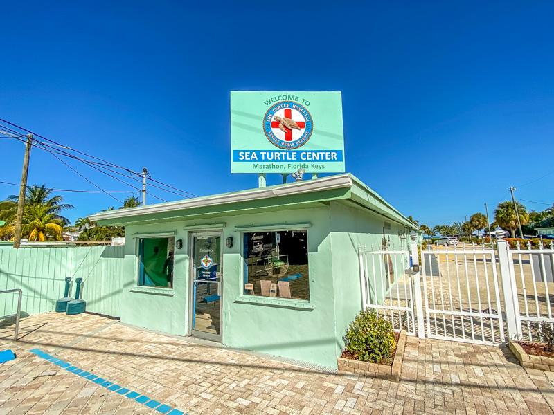 Turtle Hospital Florida Keys