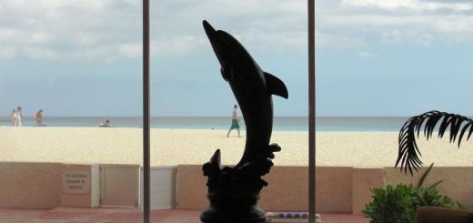 Hotel Salvia Cancún 5