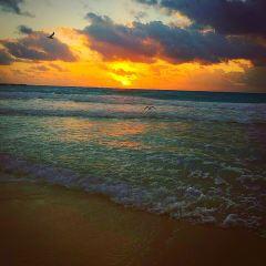 increible paisaje Playa Norte Isla Mujeres