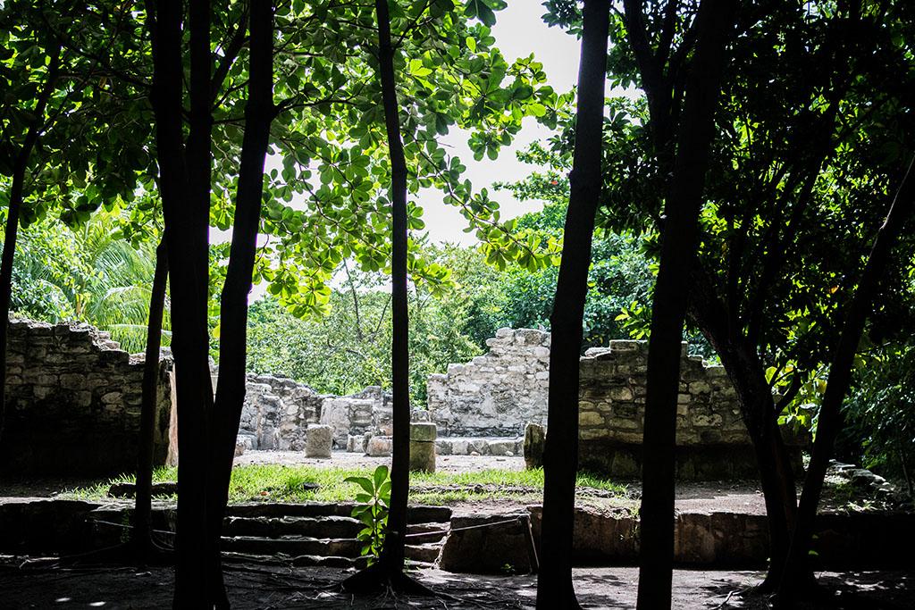 ruinas san miguelito museo maya