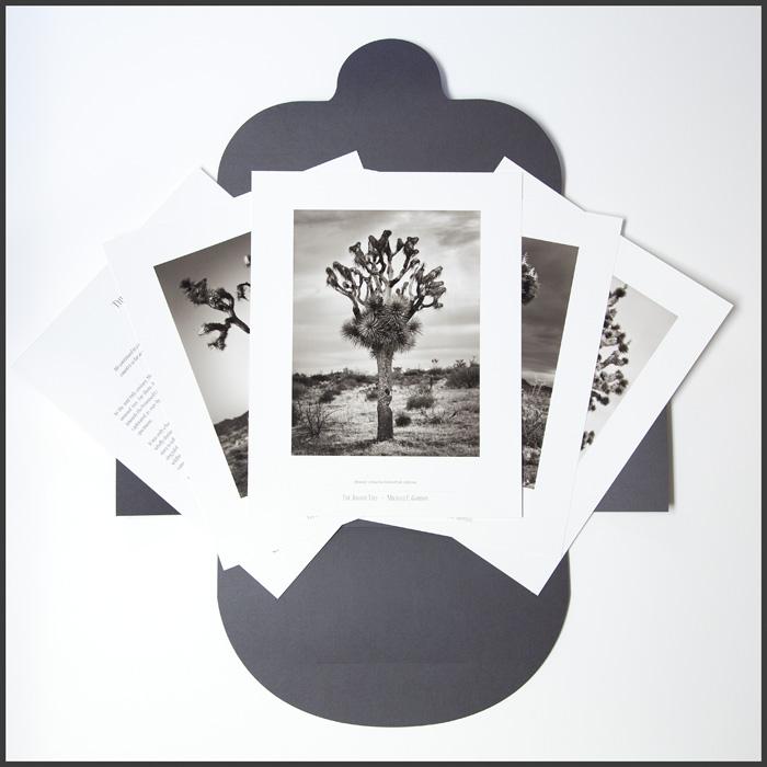 The Joshua Tree collector's folio - Michael E. Gordon