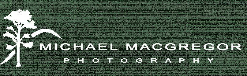 Michael Macgregor
