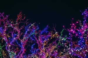 4 Easy Ways to Incorporate Holiday Lights into Your Landscape this Season
