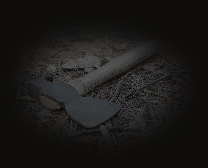 Hatchet lying on forest floor
