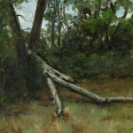 Fallen Tree, 2013, oil on panel, 16x20in (40x50cm)