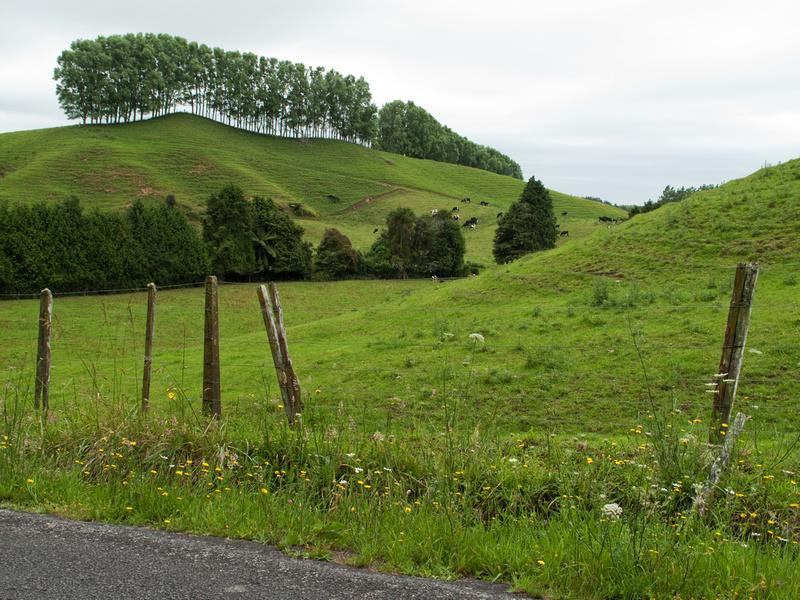 Taranaki landscape Te Popo area