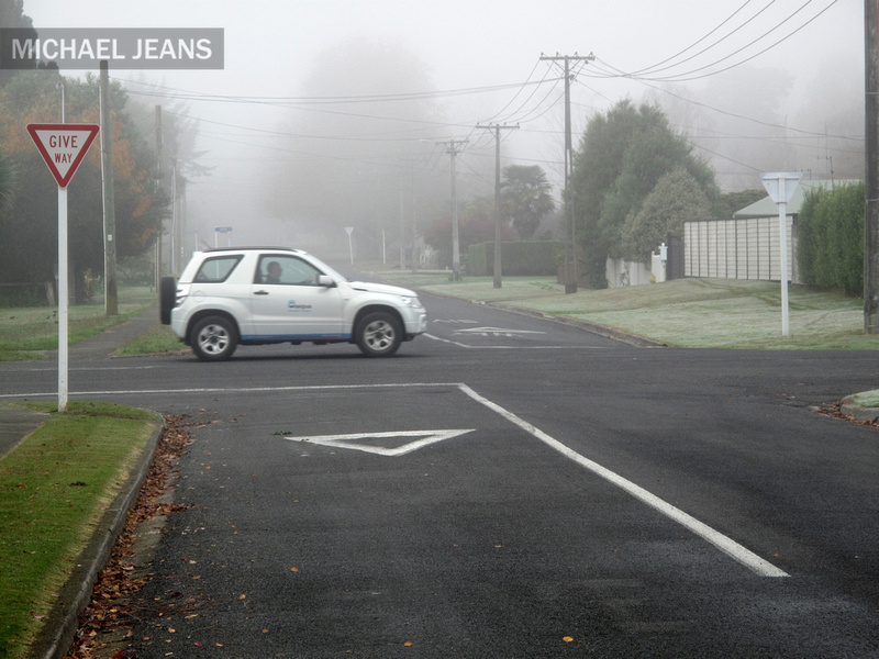 Mist Leamington NZ 19/5/2010