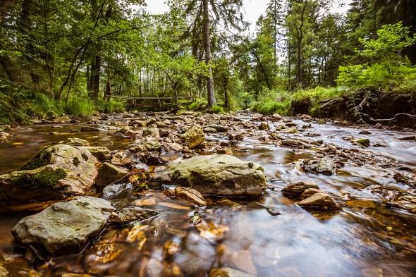 Die idyllische Landschaft des Weser- und Eschbachtals. Foto: Michael Kaub
