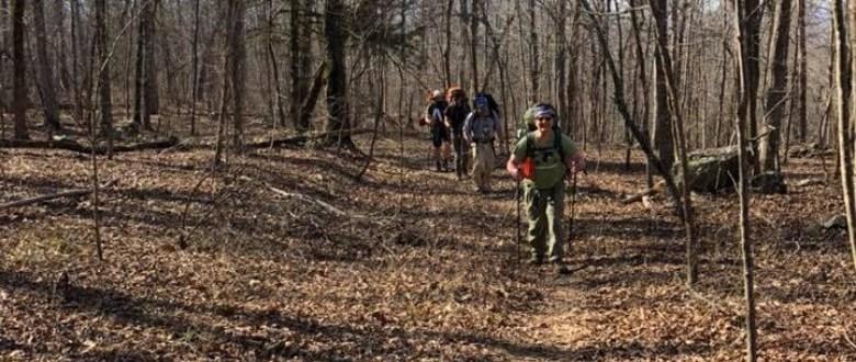 Taking A Hike Down The Trail