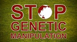 Speak Out Against GMOs