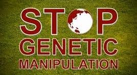Speak Out Against GMOs