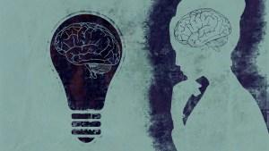 Woman Light Bulb Brain Mind  - chenspec / Pixabay