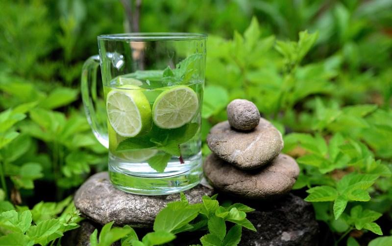 Mint Peppermint Detox Detox Water