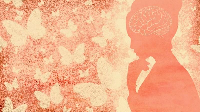 Woman Brain Butterflies Inspiration