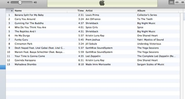 January 20, 2013 Playlist