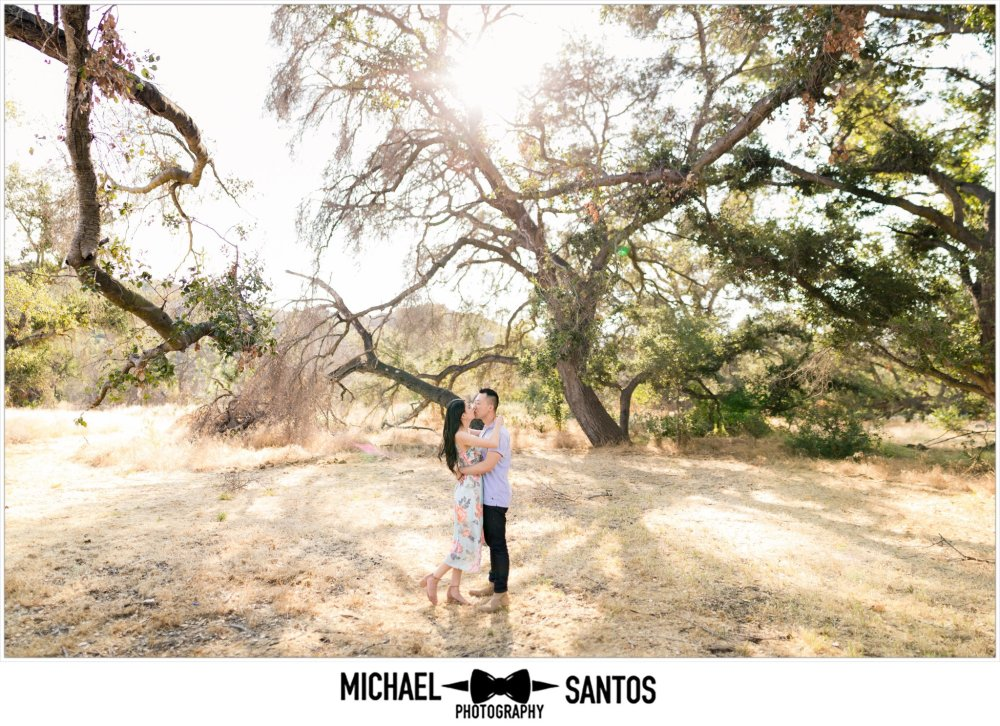 couple kissing under a tree for their caspers wilderness park engagement photography