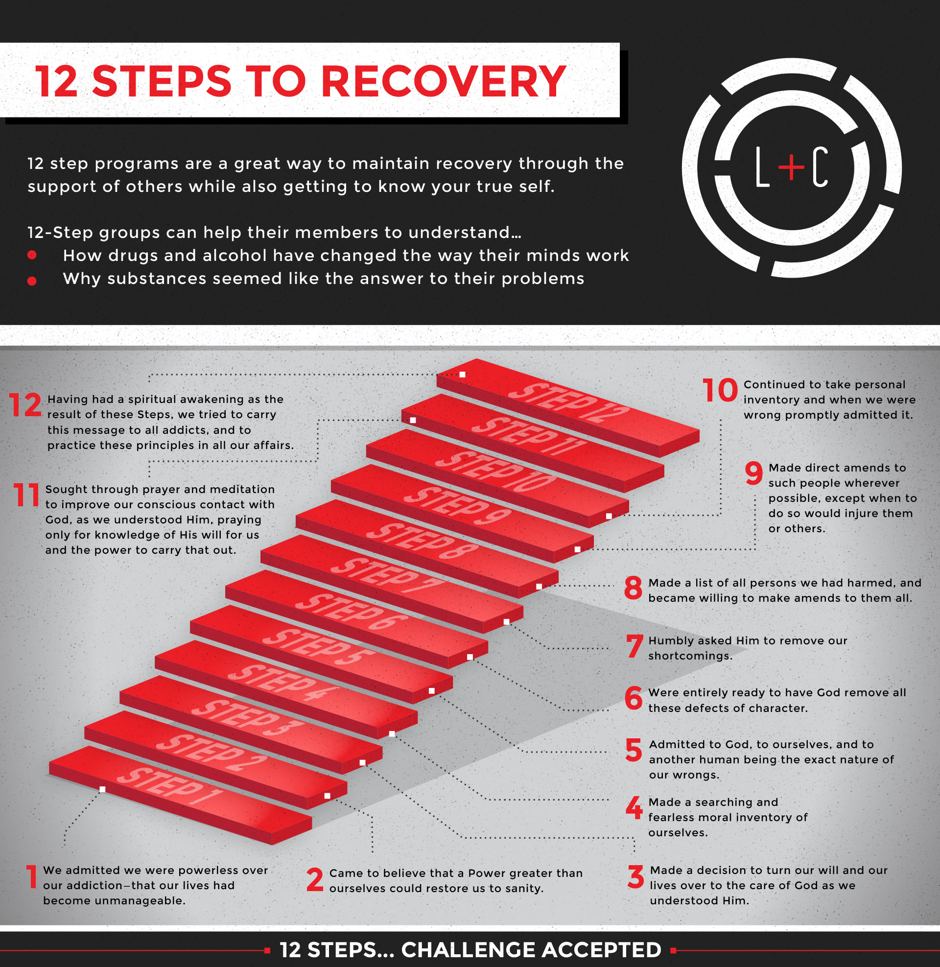 The Life Challenge 12 Steps To Recovery