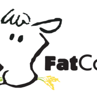 FatCow Hosting and Mail Servers for Google Apps