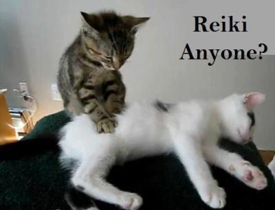 What Is Reiki Counseling? - Providence Life Coaching & Reiki Counseling - reiki-cat