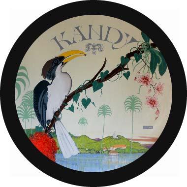 Michal Korman: Kandy, oil on canvas, 100 cm, 2016 Paris, Eraeilya Villas and Gardens