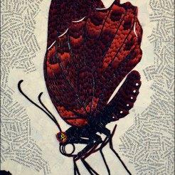 Papillon - Micro-collages 20x30 cm - VENDU