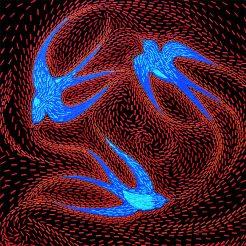 Hirondelles - Micro-collages 50x50 cm - VENDU