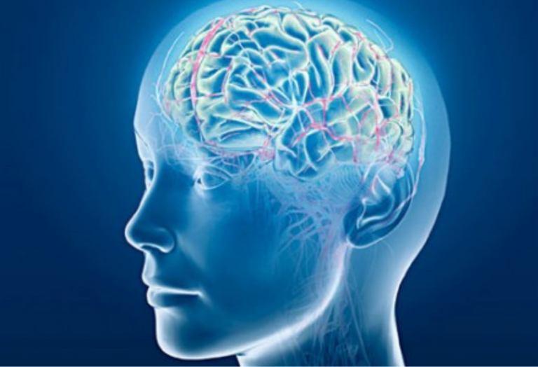 La psicoterapia cambia il cervello