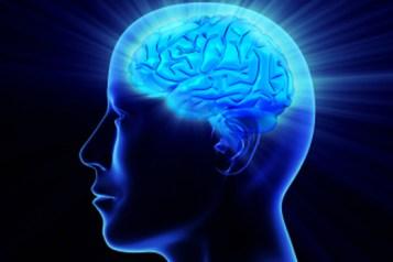 brainpower workout