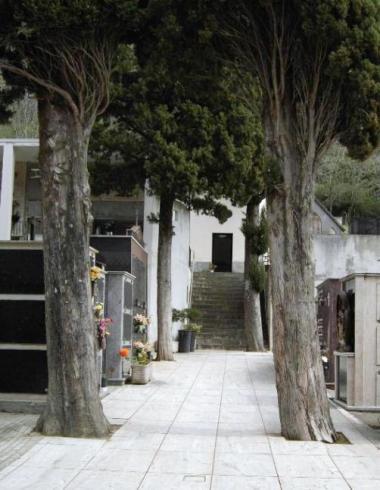 Vialetto del cimitero come si presentava prima dell'abbattimento dei cipressi