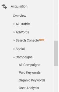 Google Analytics Organic Keywords