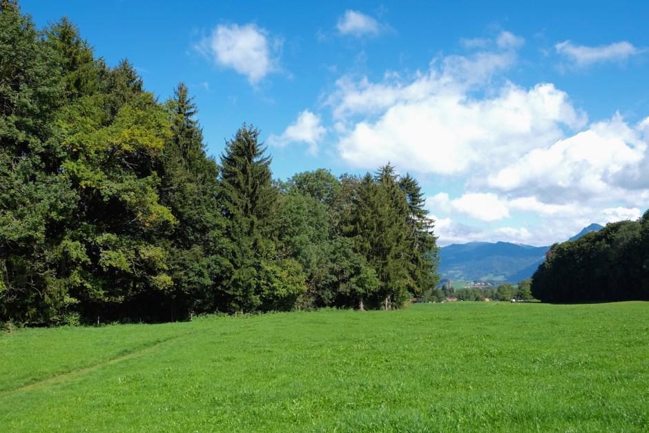 Green landscape Swiss