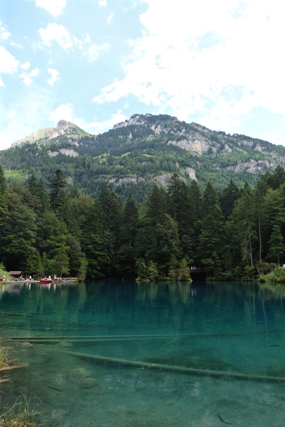 Lake Blausee Portrait