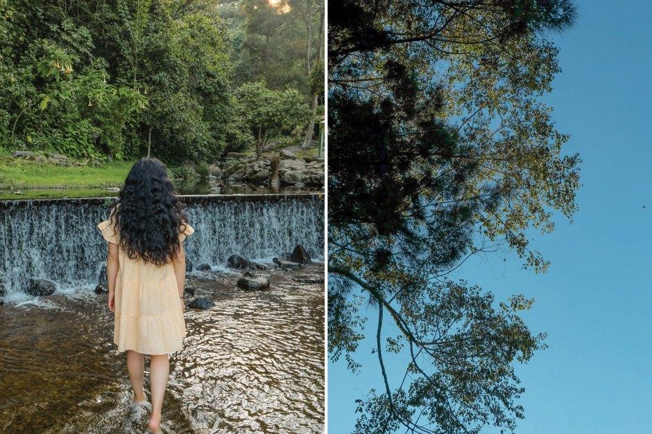 Puncak-Indonesia-Cibodas