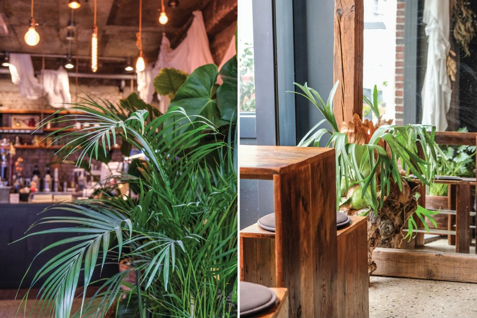 cafe botanique seoul travel 1