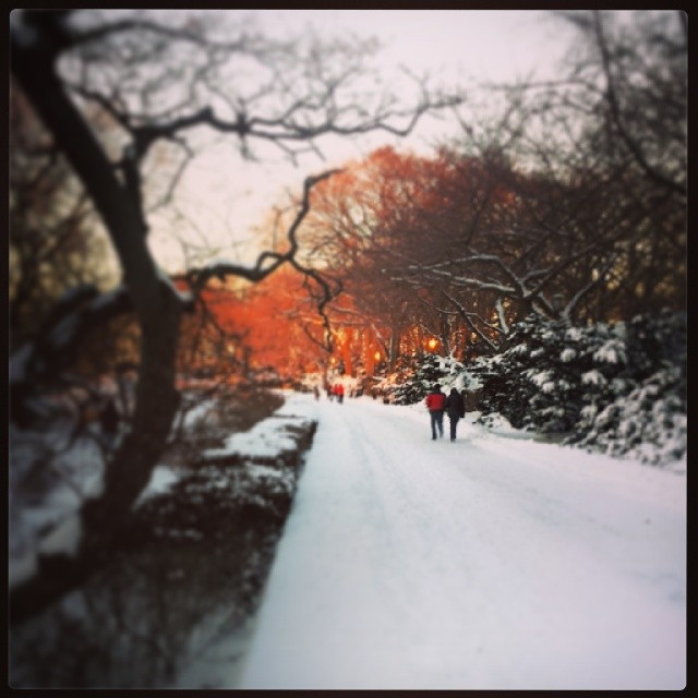 Snowy Path, Washington Heights #snowscape #hercules #newyork #winter #pretty #adoramapix