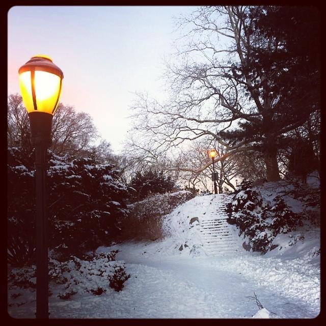 Snow scene, Fort Tryon Park #hercules #adoramapix #winter #storm #snowscape #newyork