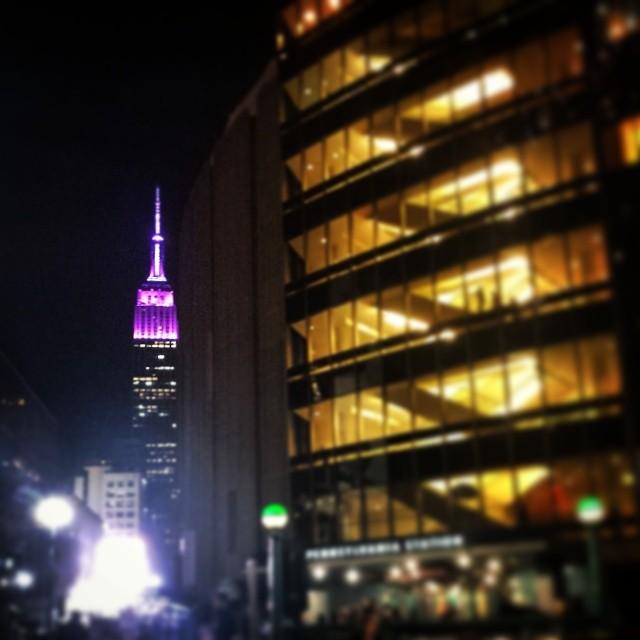 Empire State Building & Madison Square Garden #landmark #newyorkcity #newyork #purple #architecture