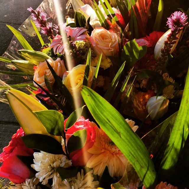 Supermarket #flowers #newyork #photography #spring #Sunset #washingtonheightsnyc