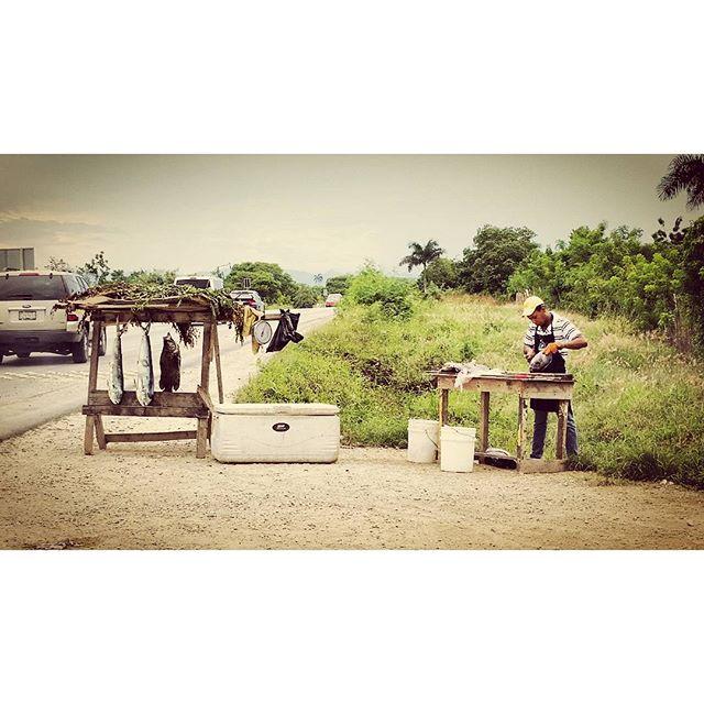 Fresh Fish #locavore #puntacana #mahimahi #roadsidefood #domincanrepublic