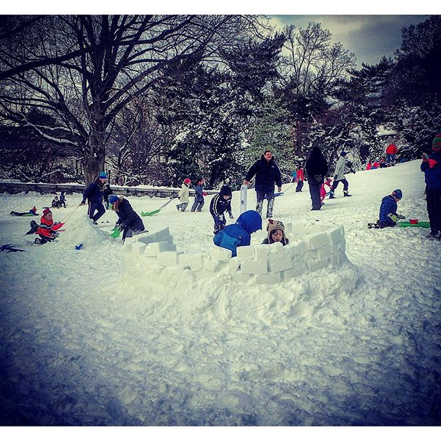 Igloo Building #newyork #igloo #inventive #stormjonas #snow #washingtonheights #newyork #forttryonpark