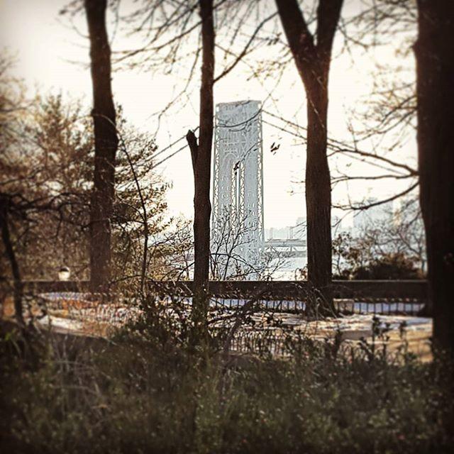 Through the trees #gwb #gwbridge #forttryonpark #newyork #washingtonheights