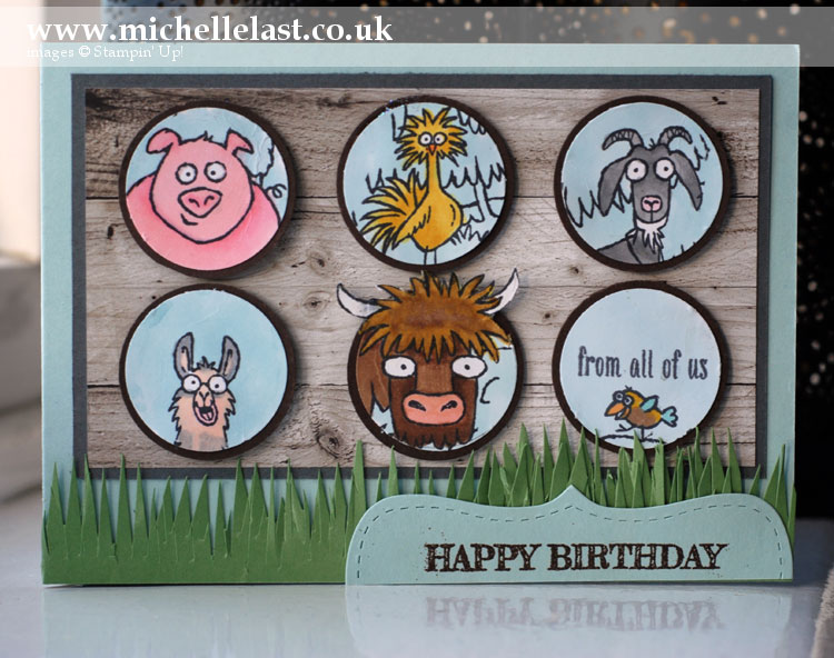 From-the-herd stamp set from Stampin Up