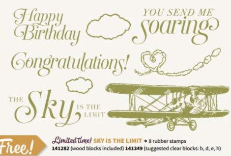 Sky is the Limit from Stampin' Up