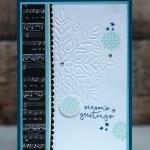 Winter Wonderland Embossing Folder from Stampin Up
