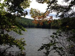 Trail around the lake