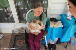 Owner Elaina Kenyon holds an Angora rabbit