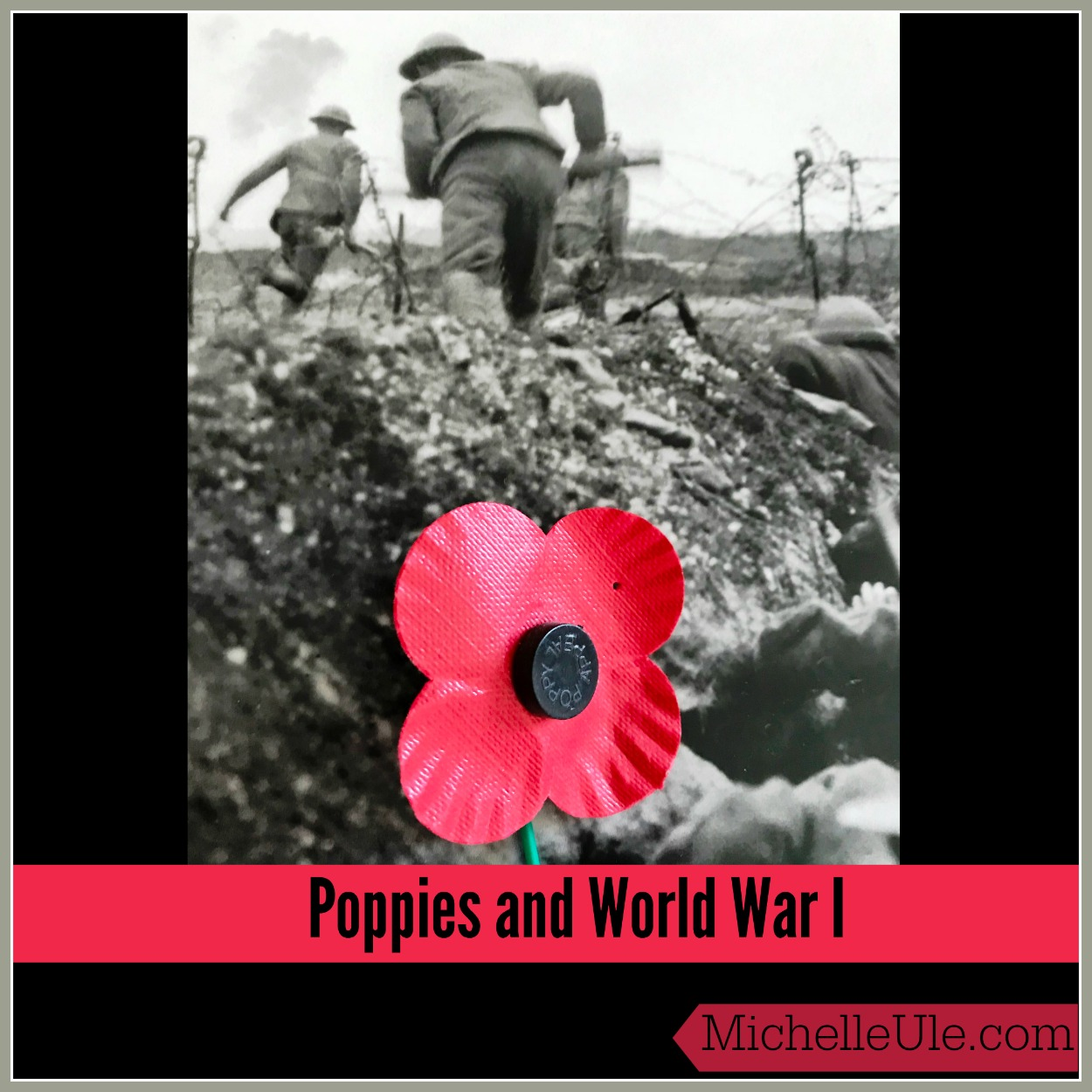 Poppies And World War I Michelle Ule Author